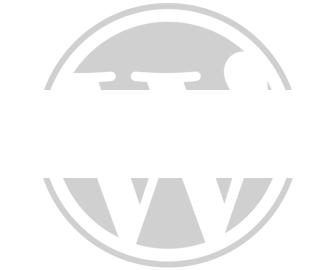 Proven WordPress Experts