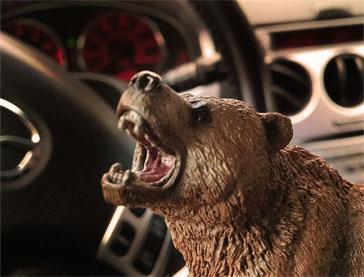 Henry Bear, Director of Bears